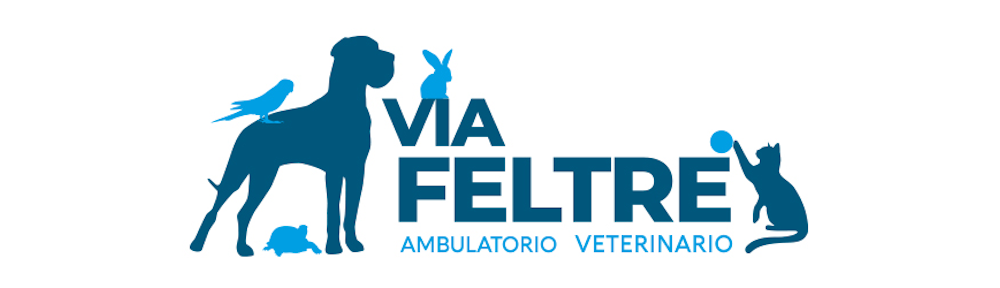 Ambulatorio Veterinario Via Feltre